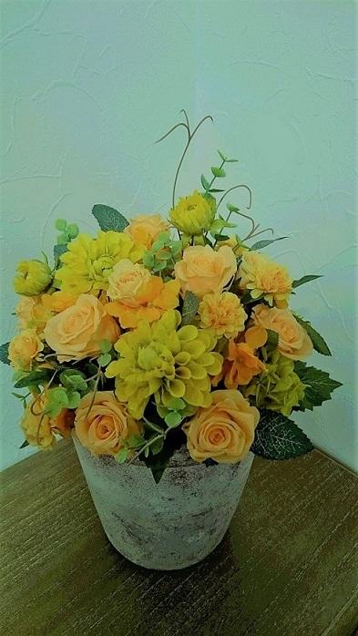 暖か味のあるオレンジのバラ